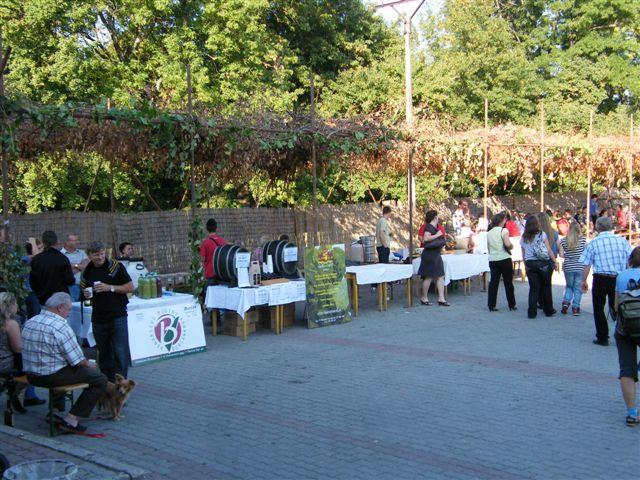 Vinobraní - Hlohovec -Hajda 17.9.2011 023