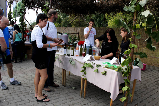 Hlohovecke-vinobrani-2014-IMG_5855