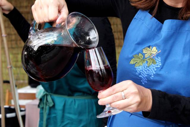 Hlohovecke-vinobrani-2014-IMG_5949