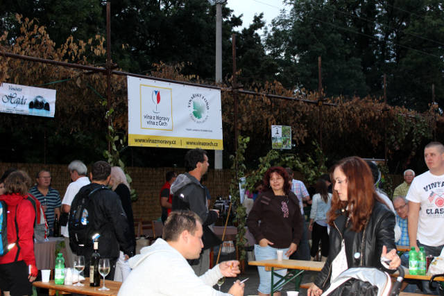 Hlohovecke-vinobrani-2014-IMG_5962