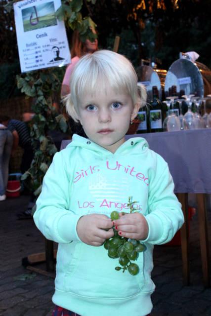 Hlohovecke-vinobrani-2014-IMG_5998