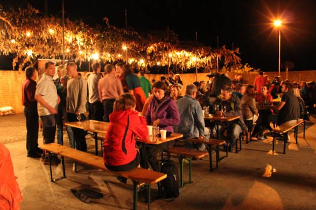 Hlohovecke-vinobrani-2014-IMG_6110