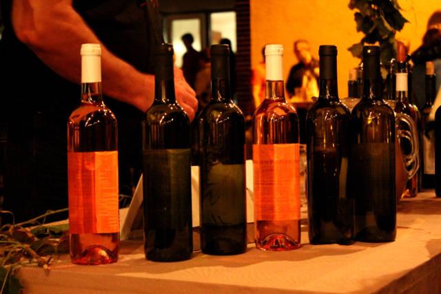 Hlohovecke-vinobrani-2014-IMG_6143