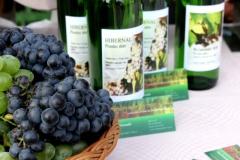 Hlohovecke-vinobrani-2014-IMG_5857
