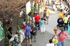 Hlohovecke-vinobrani-2014-IMG_5909