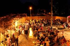 Hlohovecke-vinobrani-2014-IMG_6050