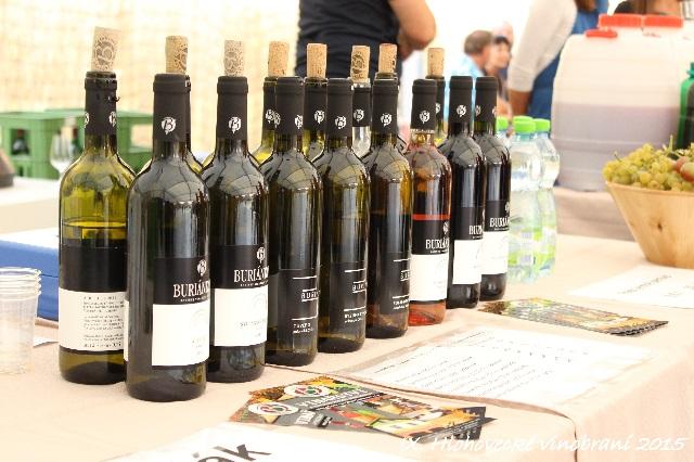 hlohovecke vinobrani 2015 IMG_0608