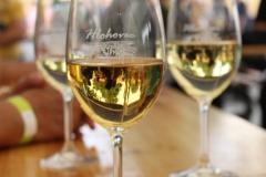 hlohovecke vinobrani 2015 IMG_0582
