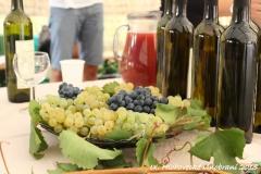 hlohovecke vinobrani 2015 IMG_0609