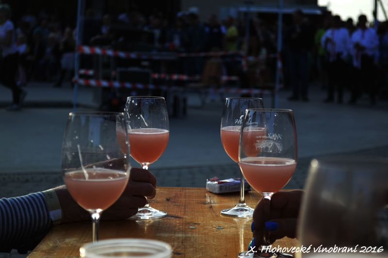 Hlohovecke vinobrani 2016 FDSC_0358