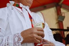 Hlohovecke vinobrani 2016 FDSC_0095