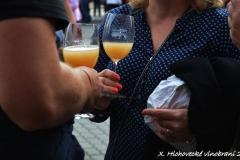 Hlohovecke vinobrani 2016 FDSC_0151